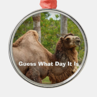Guess What Day It Is Camel Funny Quote Metal Ornament