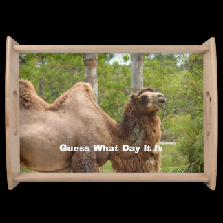 Guess What Day It Is Camel Funny Quote Serving Tray