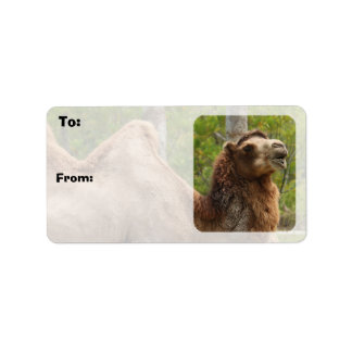Guess What Day It Is Camel Gift Tags Sheets