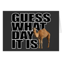 Guess What Day It Is Hump Day Camel
