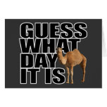 Guess What Day It Is Hump Day Camel Greeting Cards
