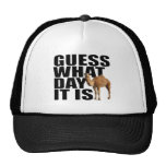 Guess What Day It Is Hump Day Camel Hat