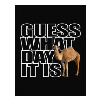 Guess What Day It Is Hump Day Camel Letterhead