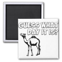 Guess What Day it Is? Hump Day Camel Magnet