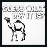 "Guess What Day it Is? Hump Day Camel Photo Print<br><div class=""desc"">Whoot,  whoot! Be happier than a camel on hump day!</div>"