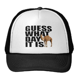 Guess What Day It Is Hump Day Camel Trucker Hat