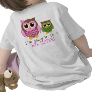 Guess who has a secret big sister tee shirts