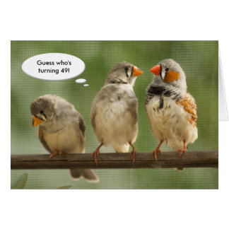 """""""Guess who is turning 49"""" Finches Template"""
