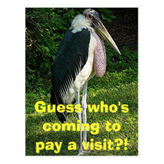 Guess who's coming to pay a visit?! postcard