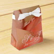 Guest  Wedding Tent Favor Token Box