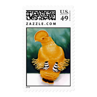 Guianan Cock-of-the-rock Postage Stamp
