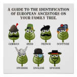 Guide To European Ancestors Poster