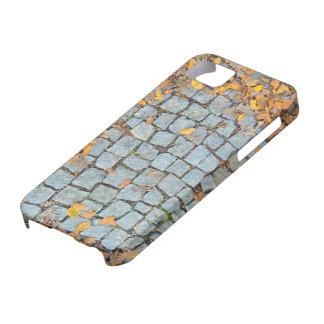 Guijarro iPhone 5 Carcasa