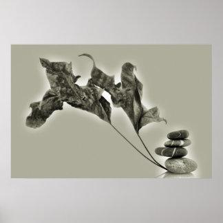 Guijarros del zen póster