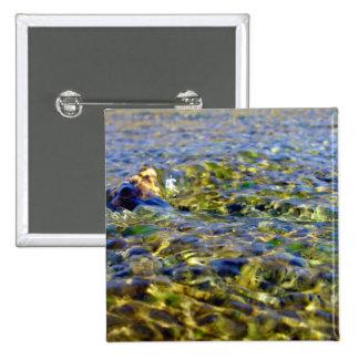 Guijarros en agua corriente pin