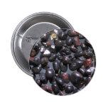 Guijarros hermosos de la magnetita, Oneuli, Puu Ol Pin