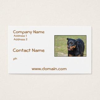 Guileless Rottweiler Business Card