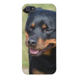 Case Savvy iPhone 5 Matte Finish Case with Rottweiler Phone Cases design