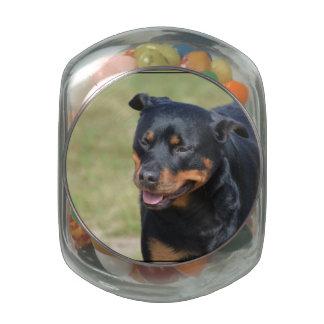 Guileless Rottweiler Glass Candy Jars