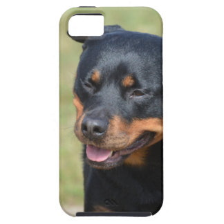 Guileless Rottweiler iPhone SE/5/5s Case