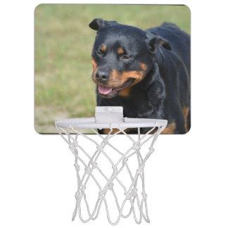 Guileless Rottweiler Mini Basketball Hoop