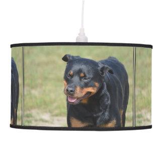 Guileless Rottweiler Pendant Lamp
