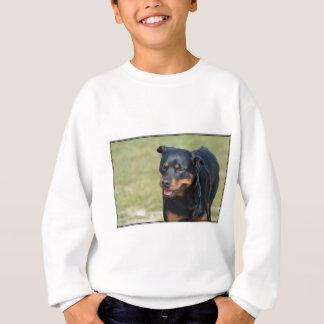 Guileless Rottweiler Sweatshirt