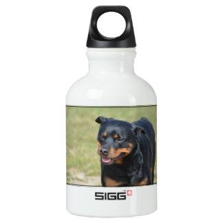 Guileless Rottweiler Water Bottle