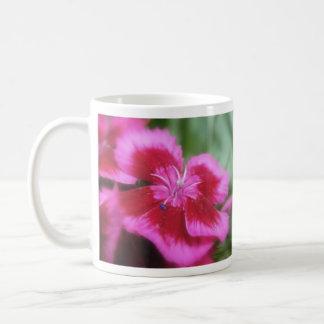 Guillermo dulce coloreado rosa rico taza de café