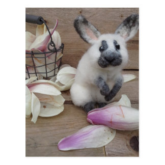Guilty rabbit postcard