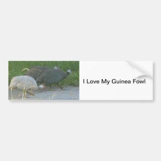 Guinea Fowl Bumper Sticker