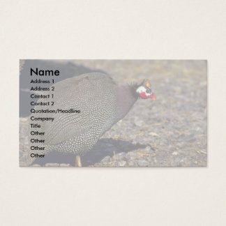 Guinea Fowl Business Card