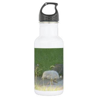 Guinea Fowl Liberty Bottle 18oz Water Bottle