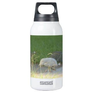 Guinea Fowl Liberty Bottle 10 Oz Insulated SIGG Thermos Water Bottle