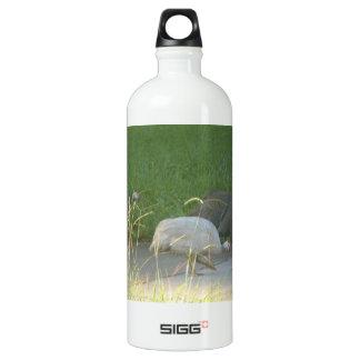 Guinea Fowl Liberty Bottle SIGG Traveler 1.0L Water Bottle
