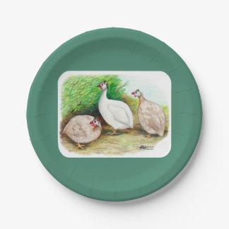 Guinea Fowl Outside Paper Plate
