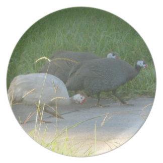 Guinea Fowl Plate