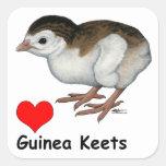 Guinea Keets del amor Calcomania Cuadrada Personalizada