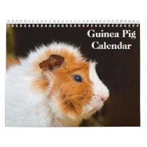 Guinea Pig 2021 Calendar