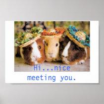 Guinea Pig Acquaintances Poster