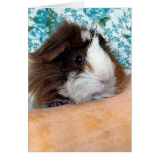 Guinea Pig and Butternut Squash Card