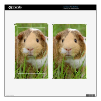 Guinea Pig and Grass Decals For Kindle Fire