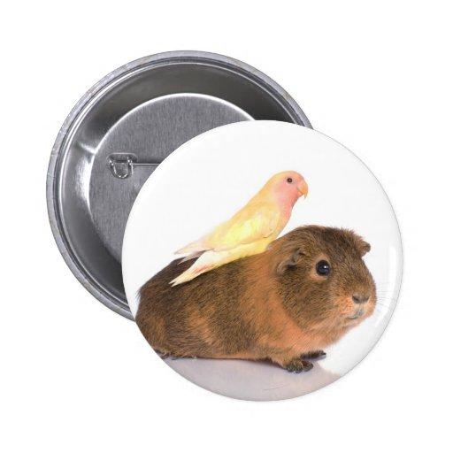 guinea pig and yellow bird pin