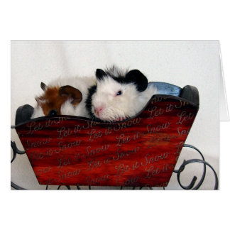 Guinea Pig Babies in a Red Sleigh Card
