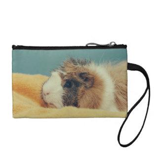 Guinea pig coin purses