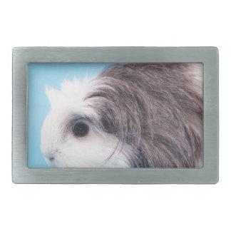 guinea pig belt buckle