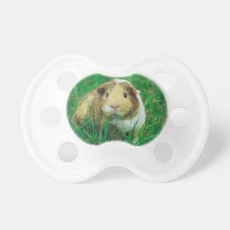 Guinea pig BooginHead pacifier