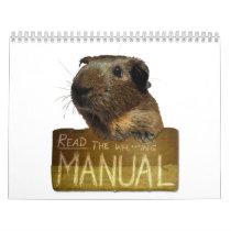 Guinea Pig Calendar 2013