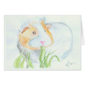 Guinea pig cards
