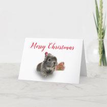 Guinea Pig Christmas Fun Holiday Card